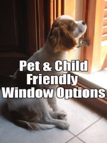 Pet & Child Friendly Replacement Windows Long Island NY