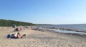 У Центрального пляжа Академгородка всплыл труп
