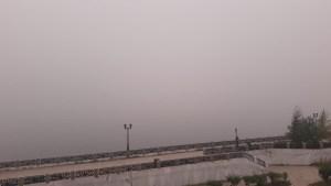 Загрязнение воздуха в Новосибирске 7 августа показывает стабильные 7 баллов