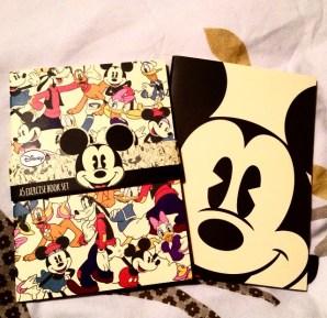Mickey notesbooks