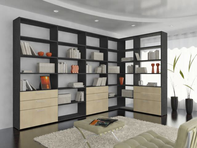 How to choose a bookcase