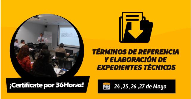 Términos de Referencia y Elaboración de Expedientes Técnicos