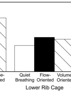 Download figure also volume rather than flow incentive spirometry is effective in rh rc rcjournal