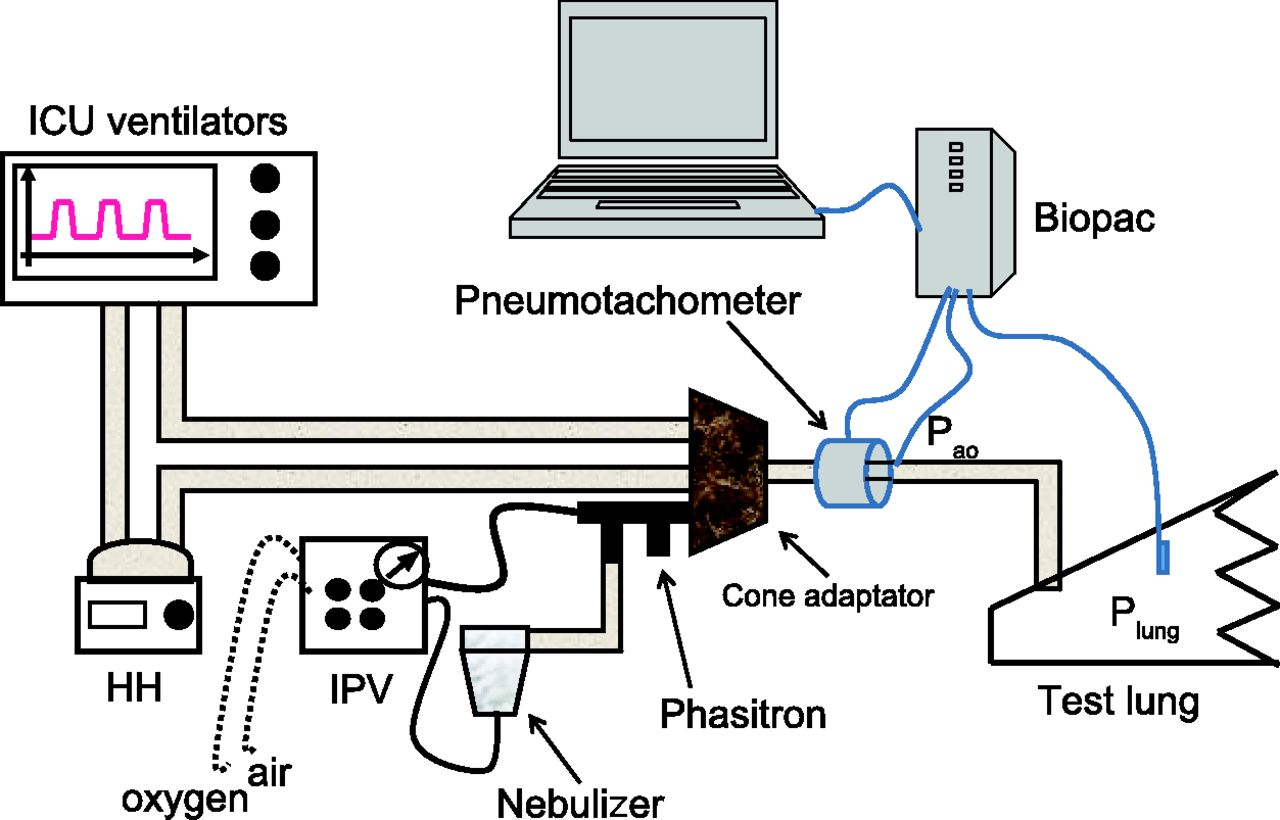 Intrapulmonary Percussive Ventilation Superimposed On