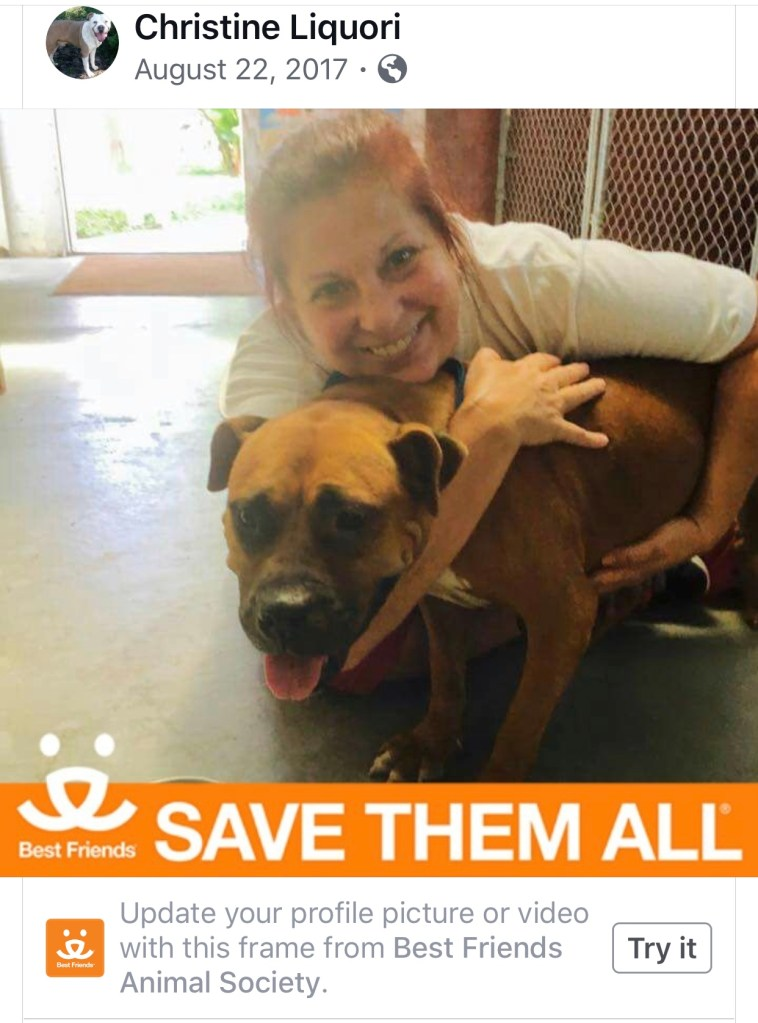 Humane Society Volunteer KILLED by Adoptable Pit Bull at the