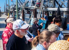 Learning about the shrimp industry