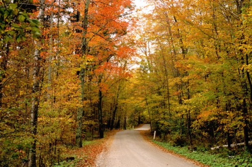 fall-pic-vermont-country-road-1568190-639x426
