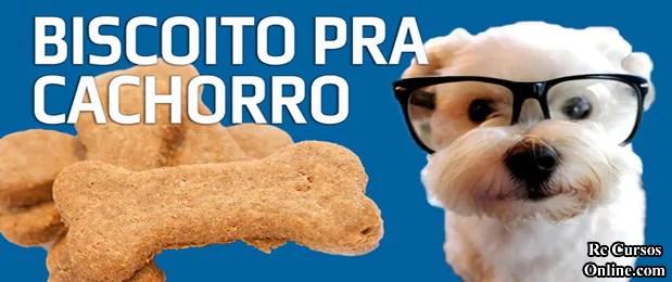 Curso-Como-Fazer-Biscoito Para Cachorro Caseiro