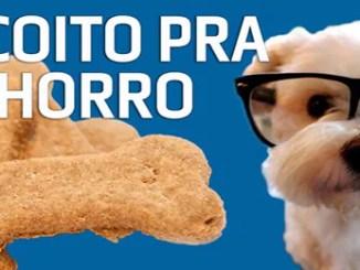 Curso Como Fazer Biscoito. Para Cachorro Caseiro.