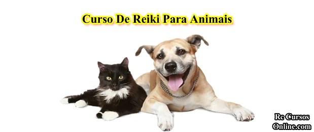 Curso de reiki para animais.