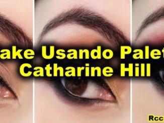 235 make usando paleta catharine hill - Como Fazer Maquiagem Usando A Paleta Catharine Hill.