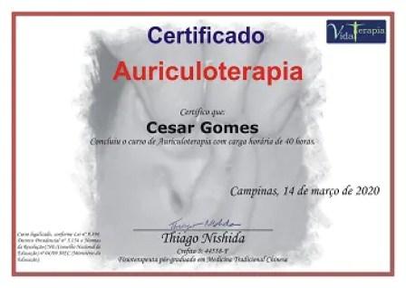 curso de auriculoterapia com certificado digital - Curso De Auriculoterapia Do Thiago Nishida Funciona Mesmo?