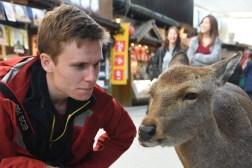 more friendly deer