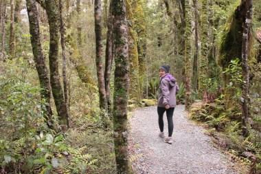 """""""nature walk"""""""