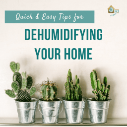 quick and easy tips for dehumidifying your home - coastal living - RCI Plus Topsail