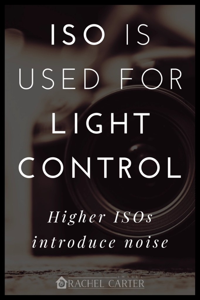 ISO is used for light control - Rachel Carter Images