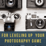 The Best Quick Tips for Leveling up Your Photography Game - Rachel Carter Images