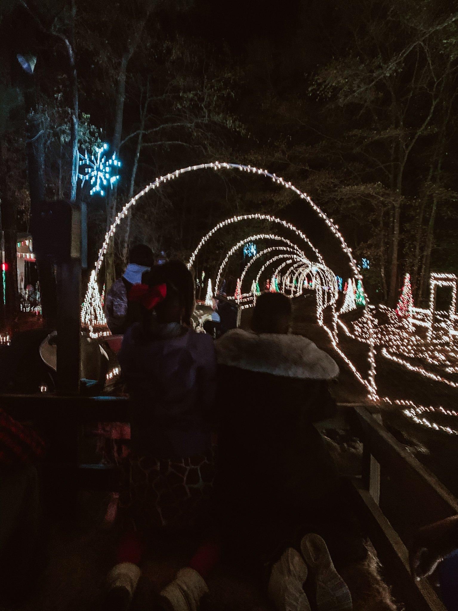 Mike's Farm Christmas Light Show - RCI Plus Topsail