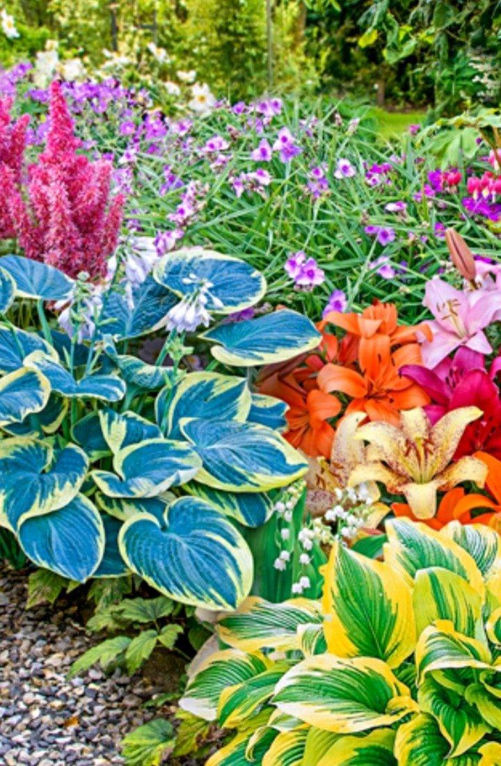 kiwanis annual plant sale - hampstead, nc