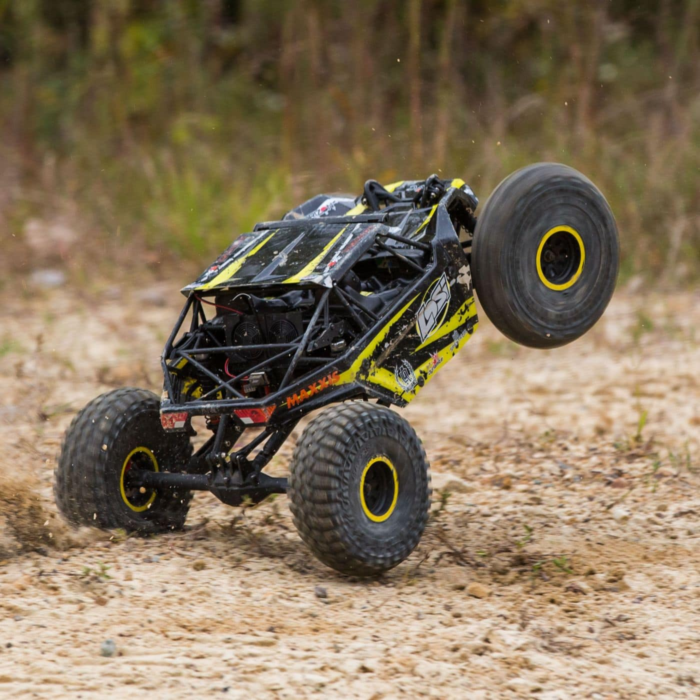 Losi Rock Rey Wheelie