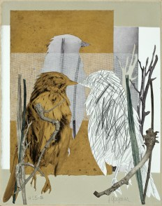 JGregorius #25.B Bird Series photo polymer 14 x 11 $200