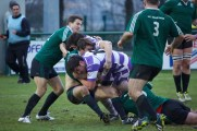 2015-01-18-rugby-904