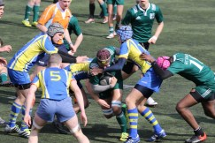 17-03-12-JUNIORS-RCS-MONTESSON0027