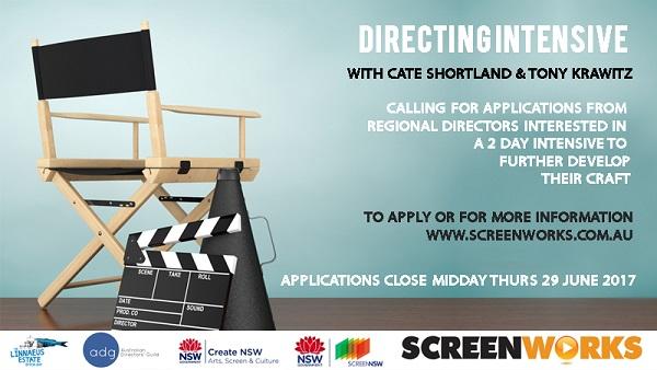 Regional directors get intensive with Screenworks