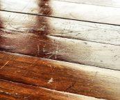 hardwood floor scratches easily