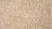 Plush Saxony Carpet
