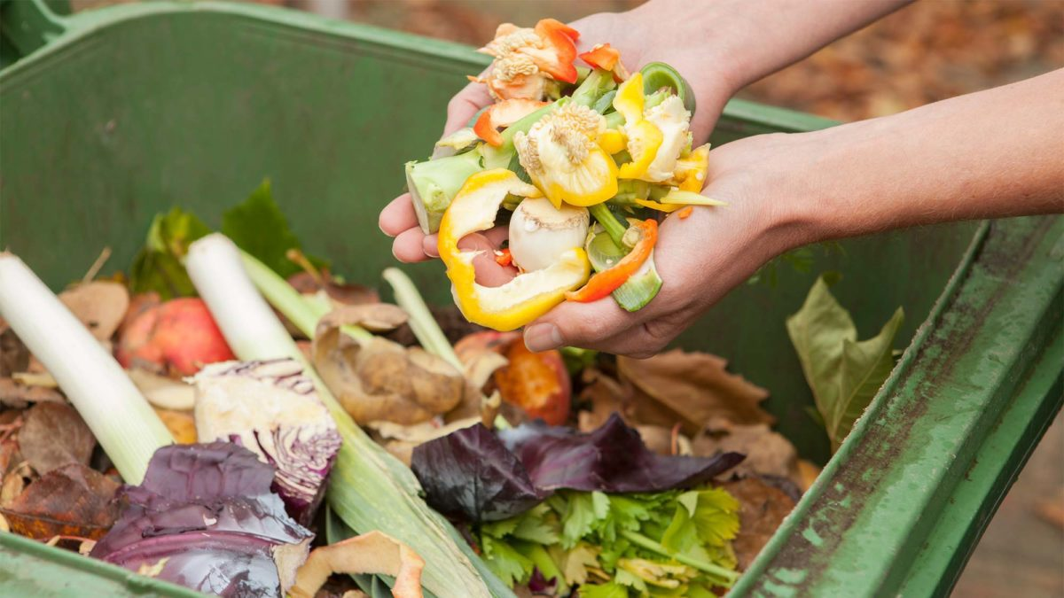 composting materials. what is compost?