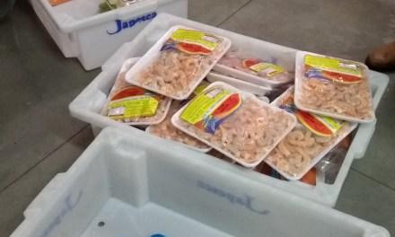Força-Tarefa apreende mais de 730kg de frutos do mar impróprios para consumo na Capital