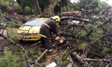 Temporal causa estragos em pelo menos 13 cidades no Sul do Estado