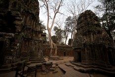 Angkor 18