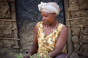 The Uganda countryside 30
