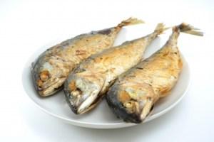 Limit fish to 12 oz a week during pregnancy.  Image courtesy of antpkr at freedigitalphotos.net.