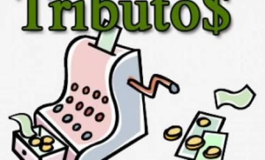 tributos-300x240-545x328 Homepage