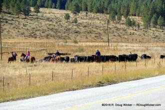 Ranching