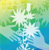 mfha-suicide-logo