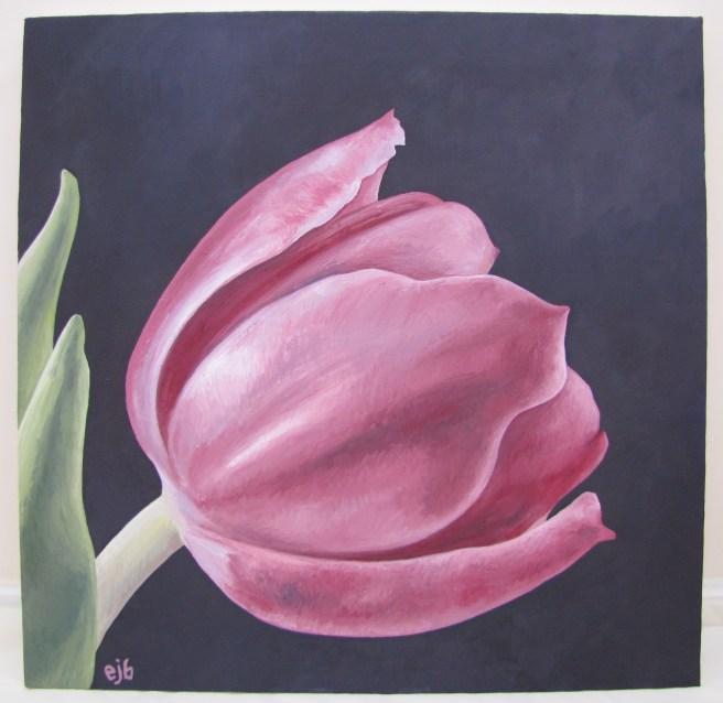 Pink Tulip (59cm x 60cm)