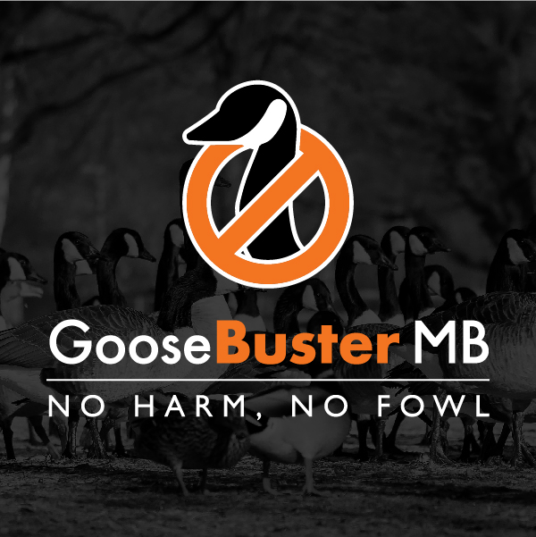 GooseBuster Myrtle Beach logo on dark background with geese