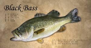 blackbass魚拓