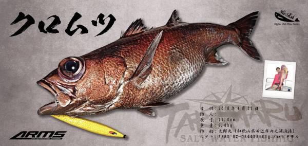 クロムツ魚拓