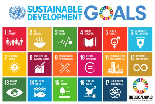 The Sustainable Development Goals – What Do They Mean for Business? - Re-Pal