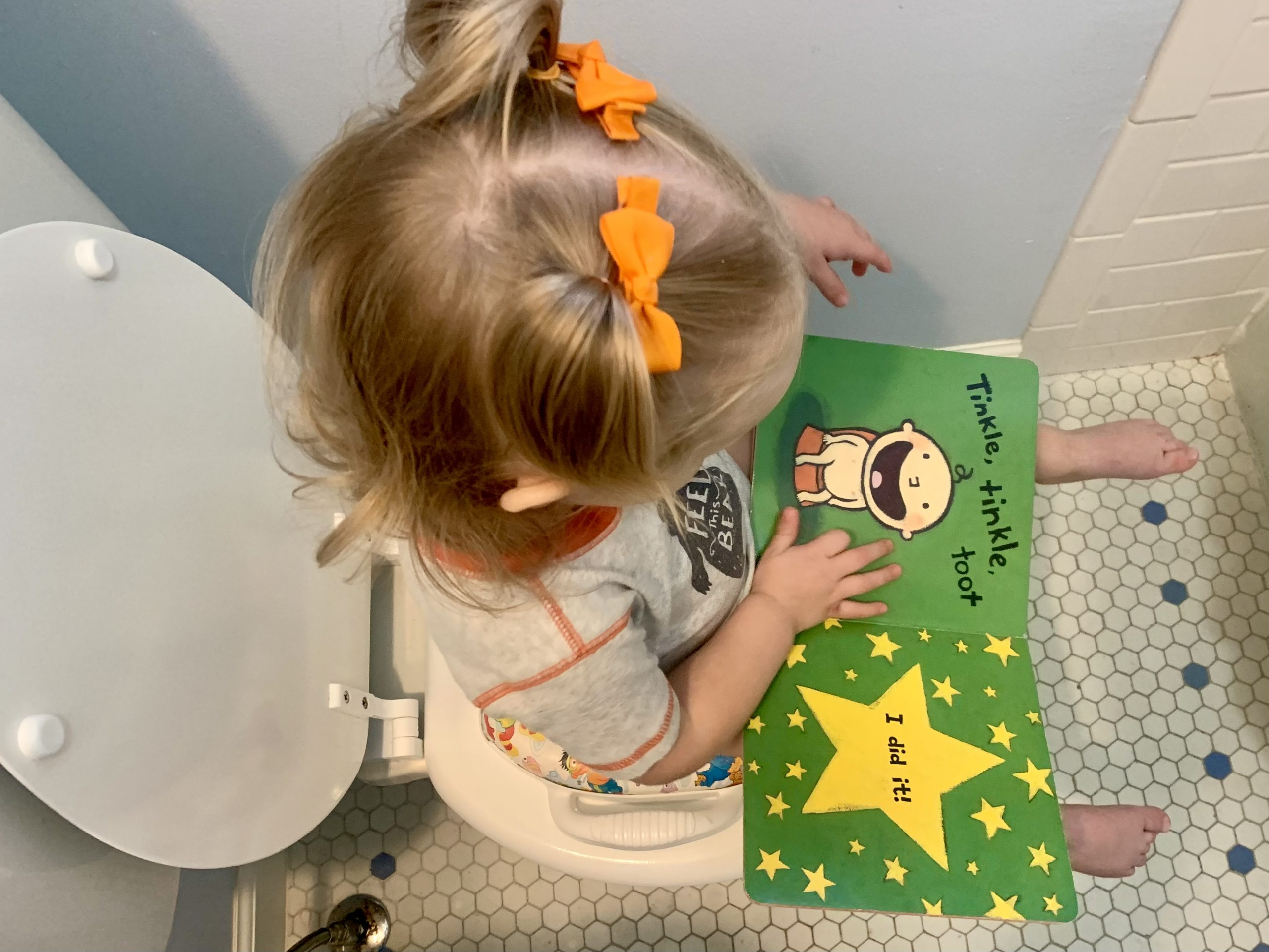 reading potty book with toilet seat reducer