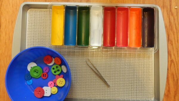 Tweezers, buttons, and a tray of colored compartments.