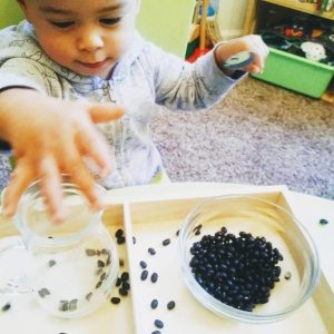 18 month old transferring beans by hand. Messy, sensory play.