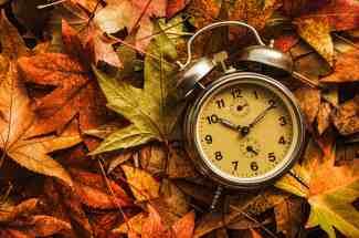 annual reports, autumn
