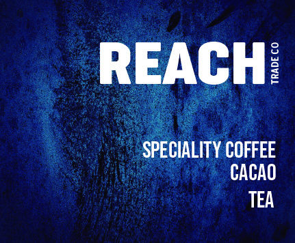 ReachWeb