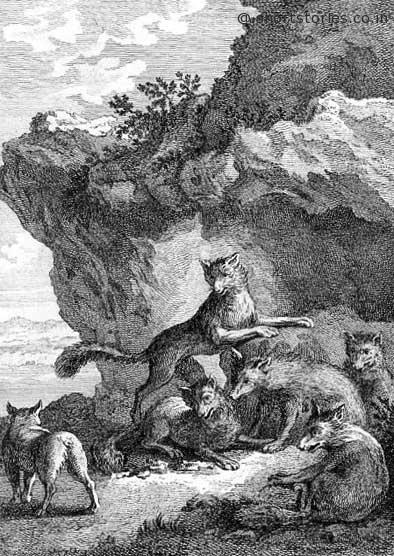fox-tail-cutoff-jean-de-la-fontaine-fables-shortstoriescoin-image
